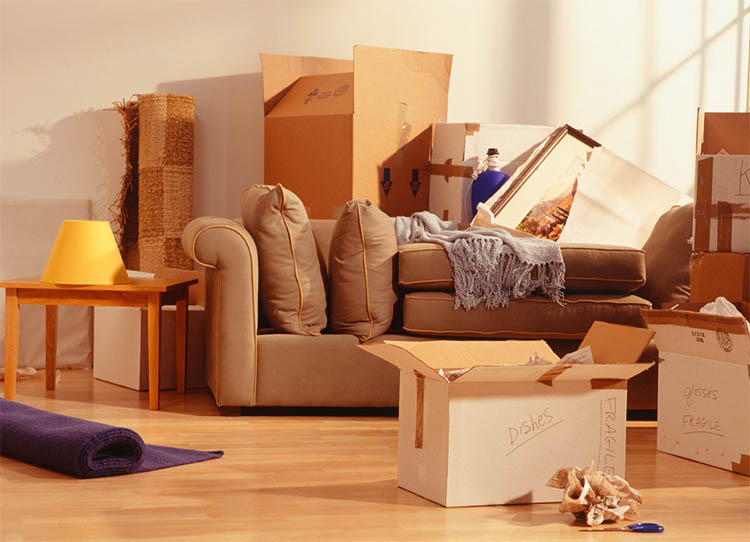Professional Movers Toronto - Moving Quote Guide